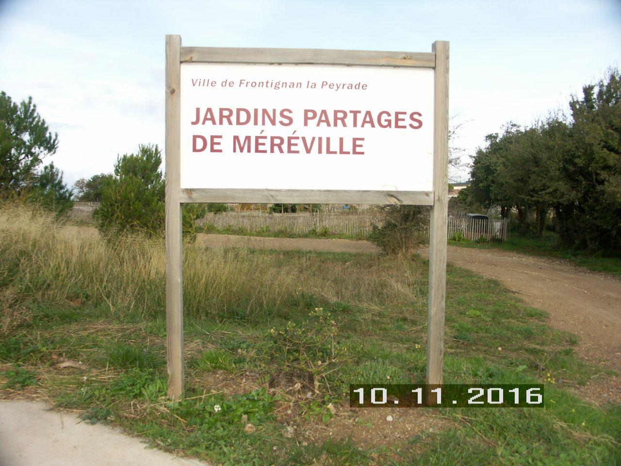 Réunion des jardiniers de Méréville dimanche 7 avril 10H30