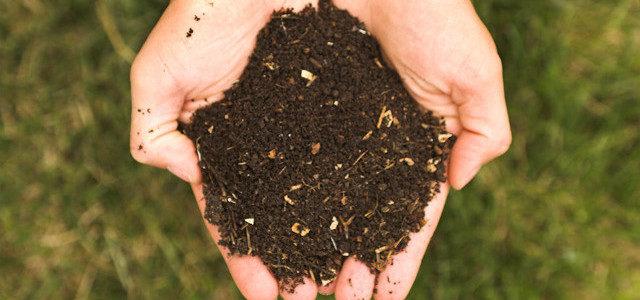 Le guide du compostage et obtenir un composteur gratuit .