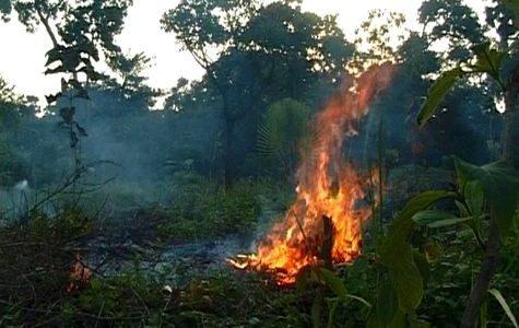 Sécheresse : Tous feux interdits jusqu'au 15 avril dans le 34