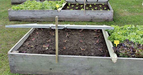 Commencer les semis sur couche chaude sous châssis