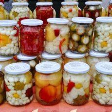 A tester , la lacto-fermentation pour la conservation  des légumes